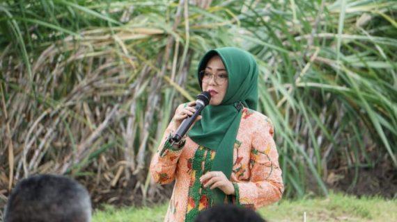Bawang Putih Masih Impor, Politisi PPP Dorong Swasembada