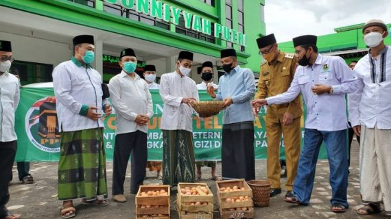 Bantu Peternak, PPP Canangkan Gerakan Konsumsi Telur Ayam